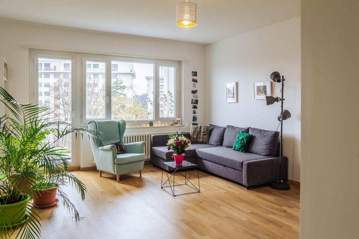 An Apartment Living Space
